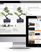 Dlaczego oferujemy outsourcing naszych usług w wdrażaniu WordPress i Shopware?